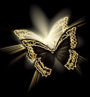 twinbutterflies
